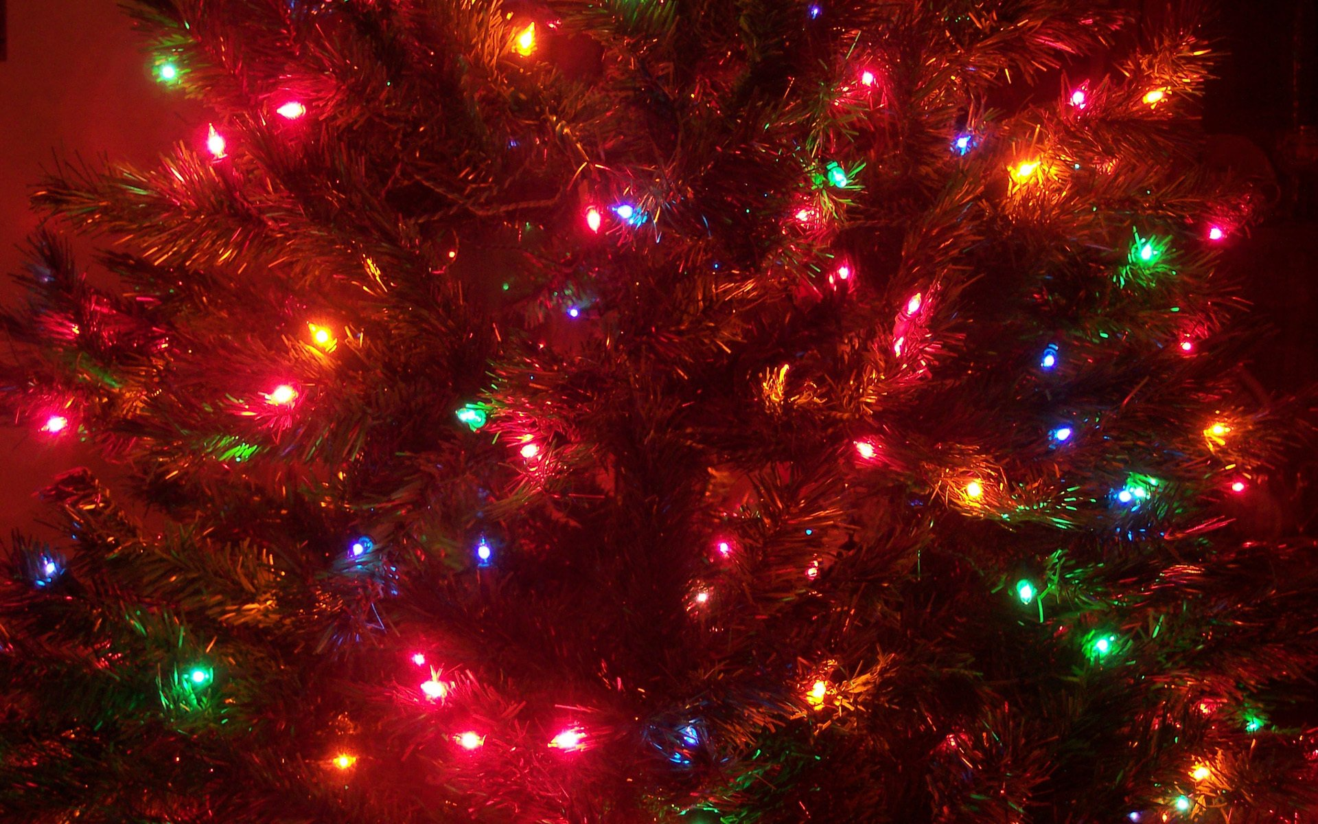 Holiday - Christmas  Christmas Lights Wallpaper