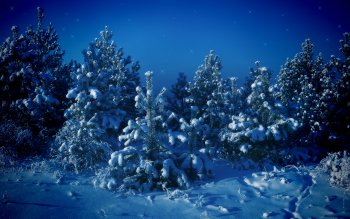 Earth - Winter Wallpapers and Backgrounds ID : 338309