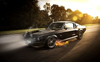 1761 Muscle Car Hd Wallpapers Background Images Wallpaper Abyss