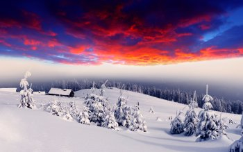 Fotografie - Winter Wallpapers and Backgrounds ID : 340705