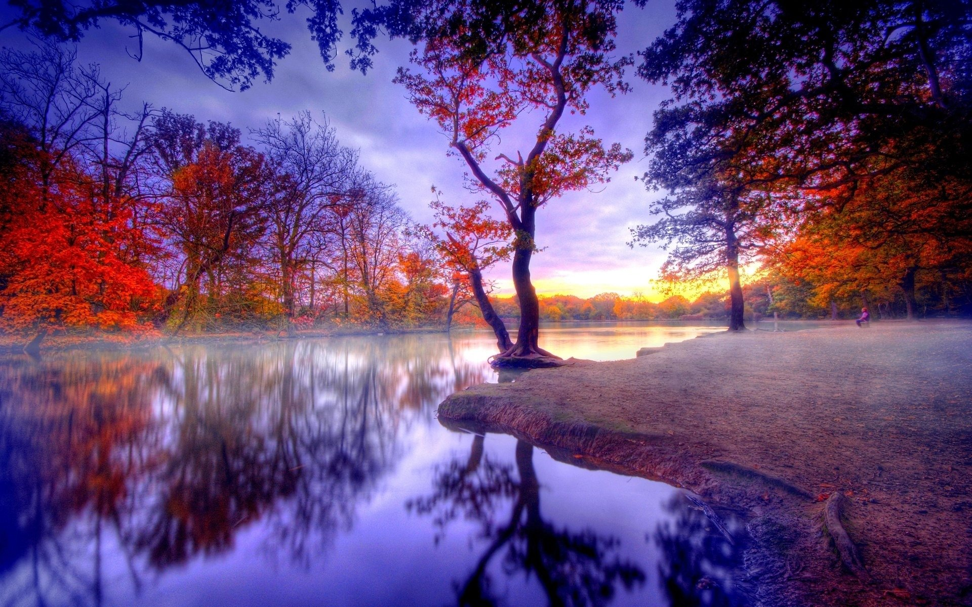 Photography - HDR  Fall Tree Lake Reflection Wallpaper
