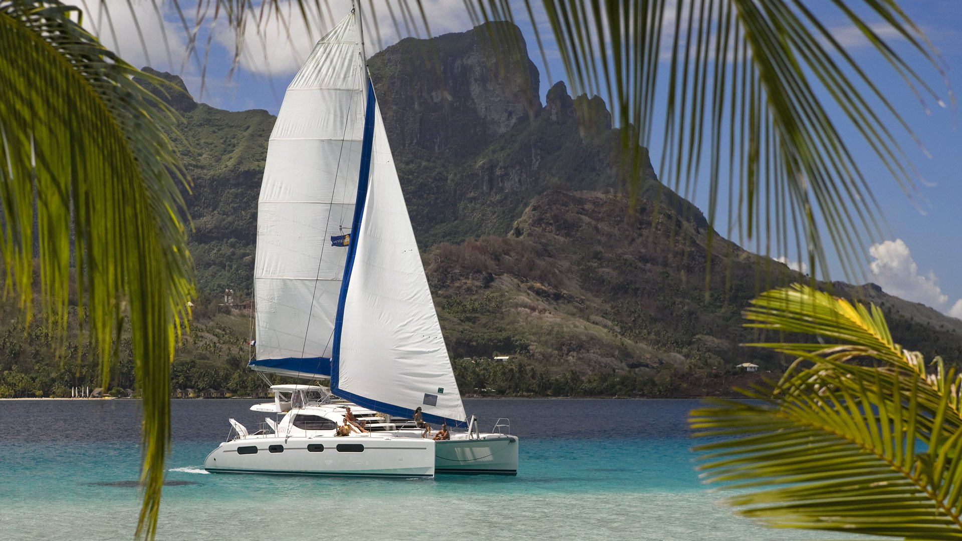 Catamaran sailboats wallpaper