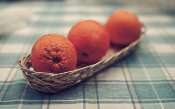 Food - Orange Wallpapers and Backgrounds ID : 346459