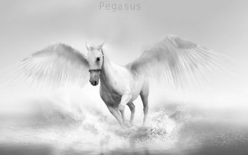 Fantasy - Pegasus Wallpapers and Backgrounds ID : 348271