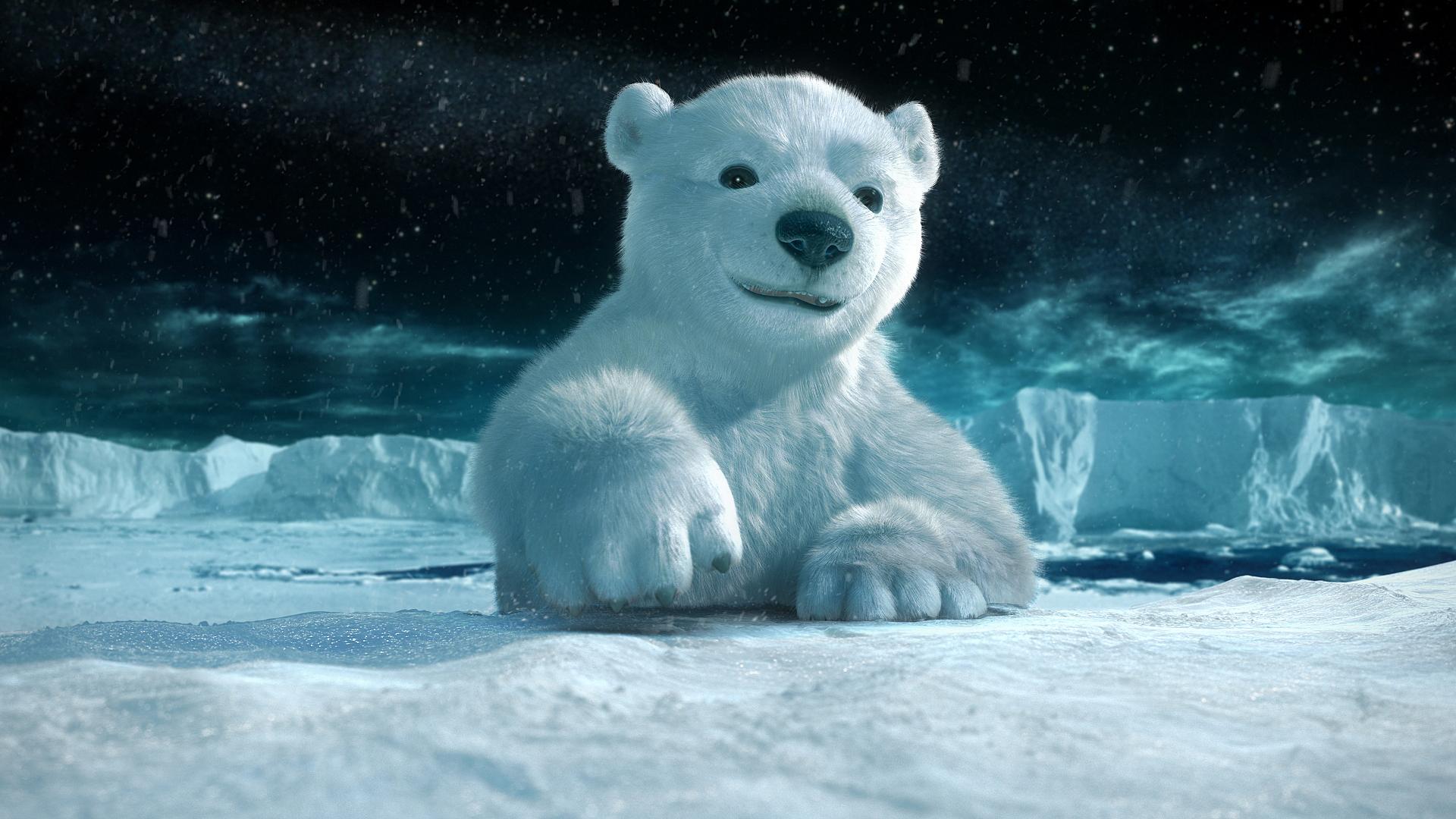 1 polar bear hd wallpapers