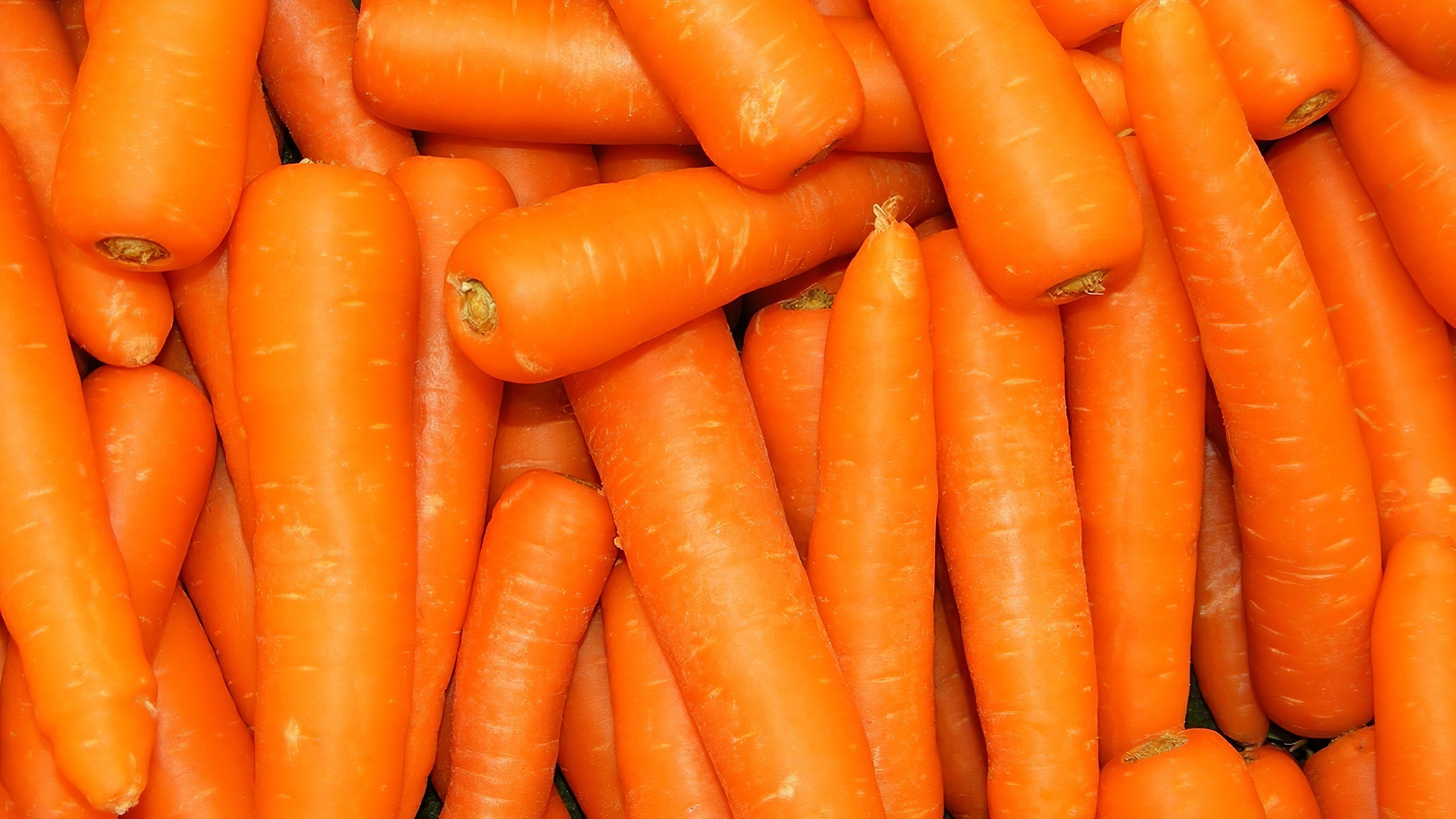 14 Carrot HD Wallpapers | Backgrounds - Wallpaper Abyss