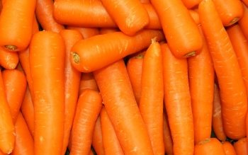 Food - Carrot Wallpapers and Backgrounds ID : 355194