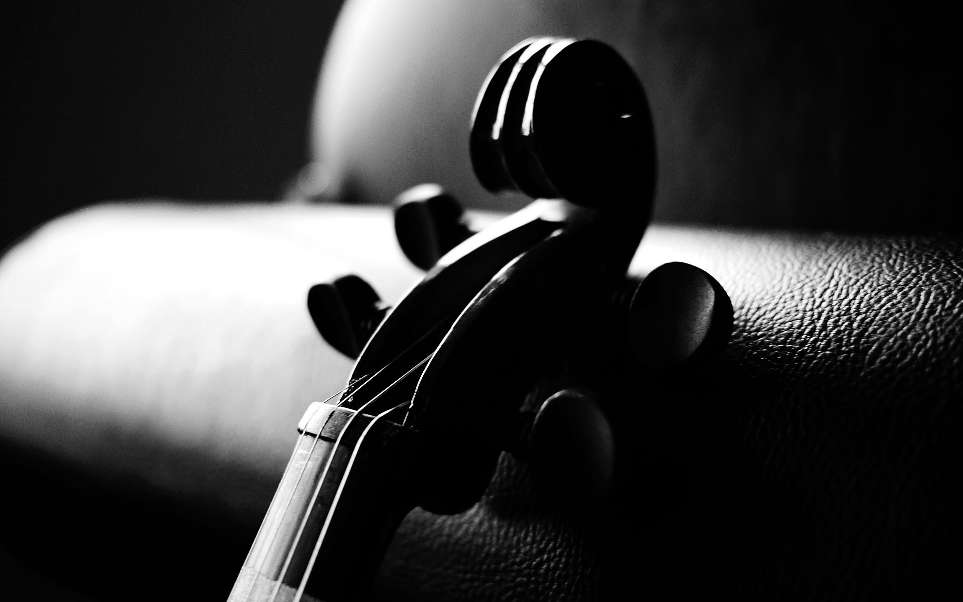 cool 3d wallpaper violin - photo #22