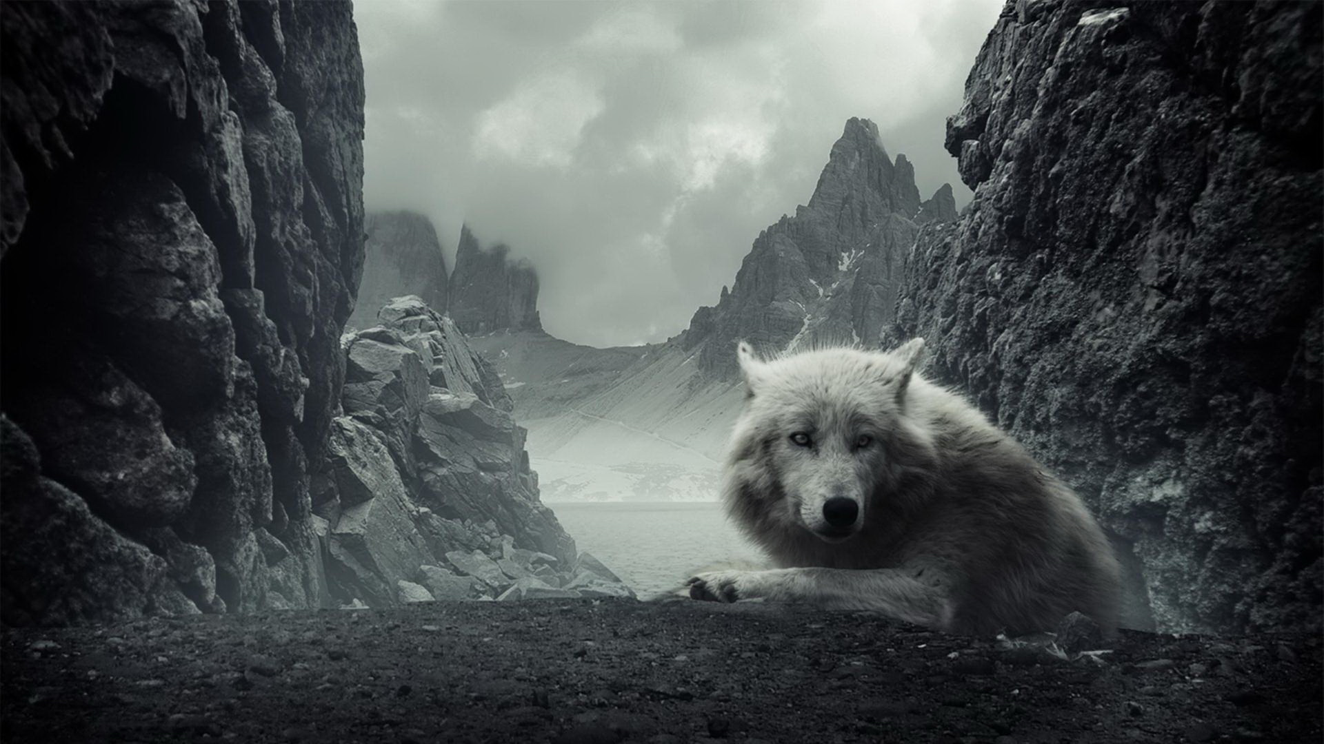 big bad wolves wallpaper - photo #44