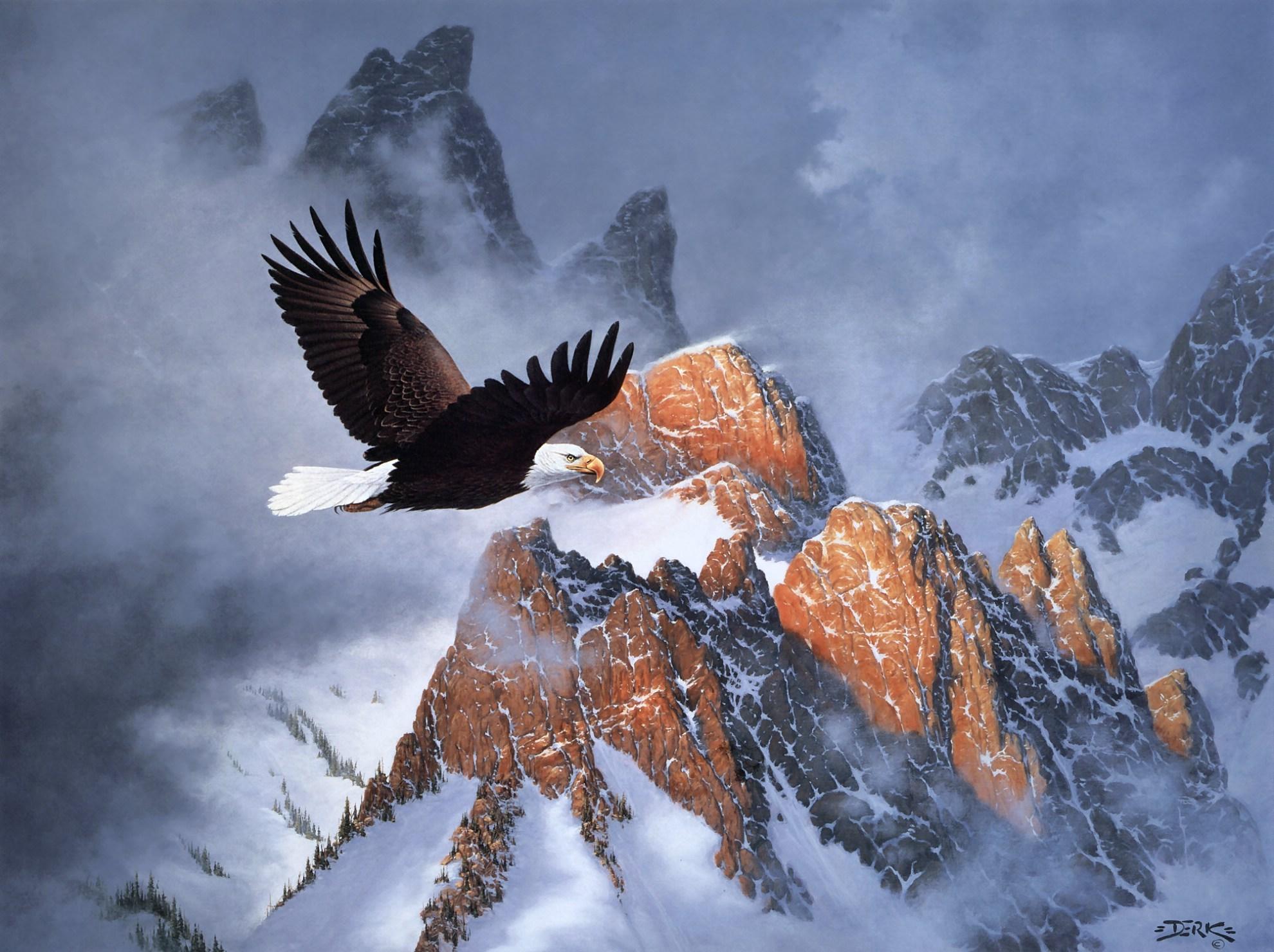 Hd wallpaper eagle - Hd Wallpaper Background Id 361507 1980x1480 Animal Bald Eagle