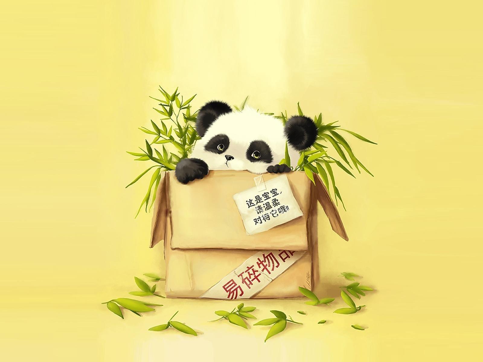 Panda Fond d'écran and Arrière-Plan | 1600x1200 | ID:361491 - Wallpaper Abyss