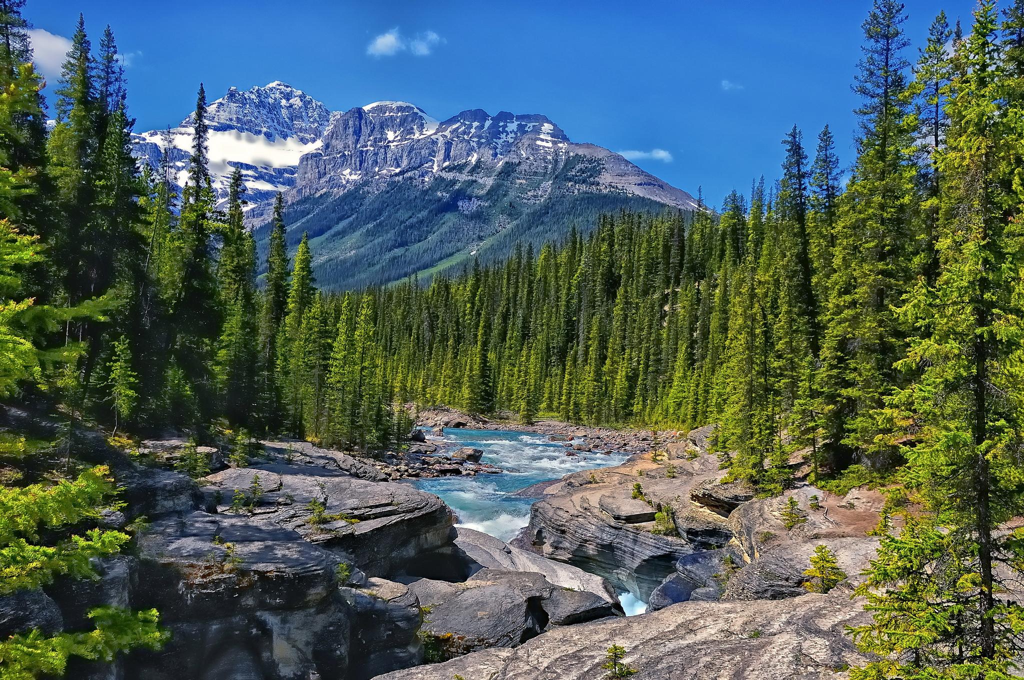Alberta канада mistaya river 446770 раздел
