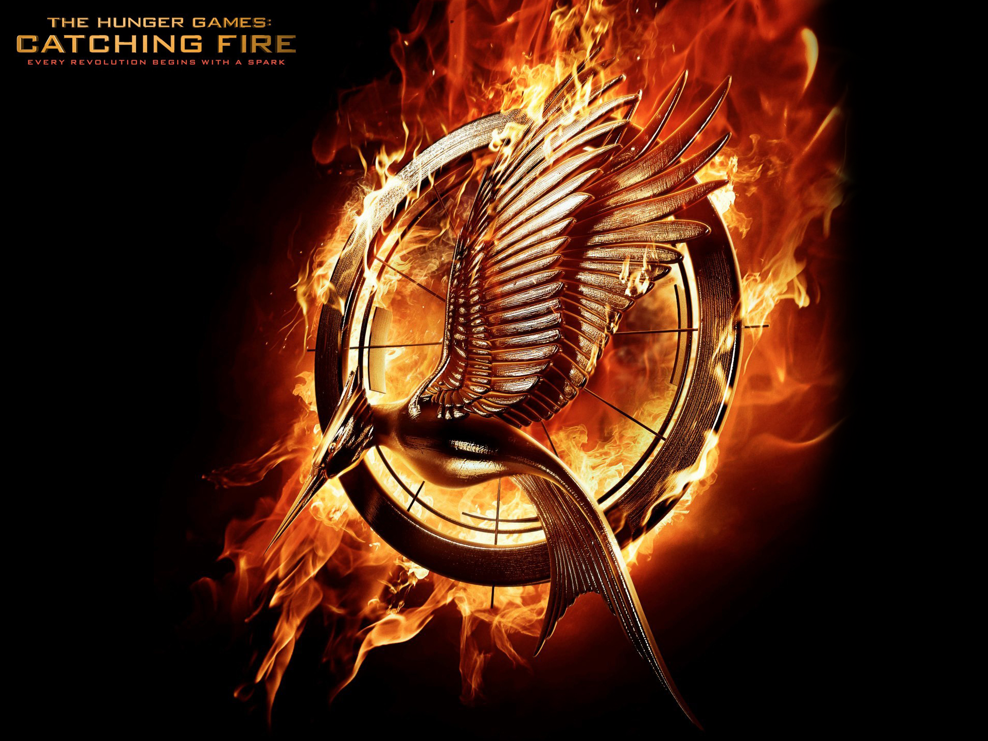 The Hunger Games Catching Fire Hd Wallpaper Background Image