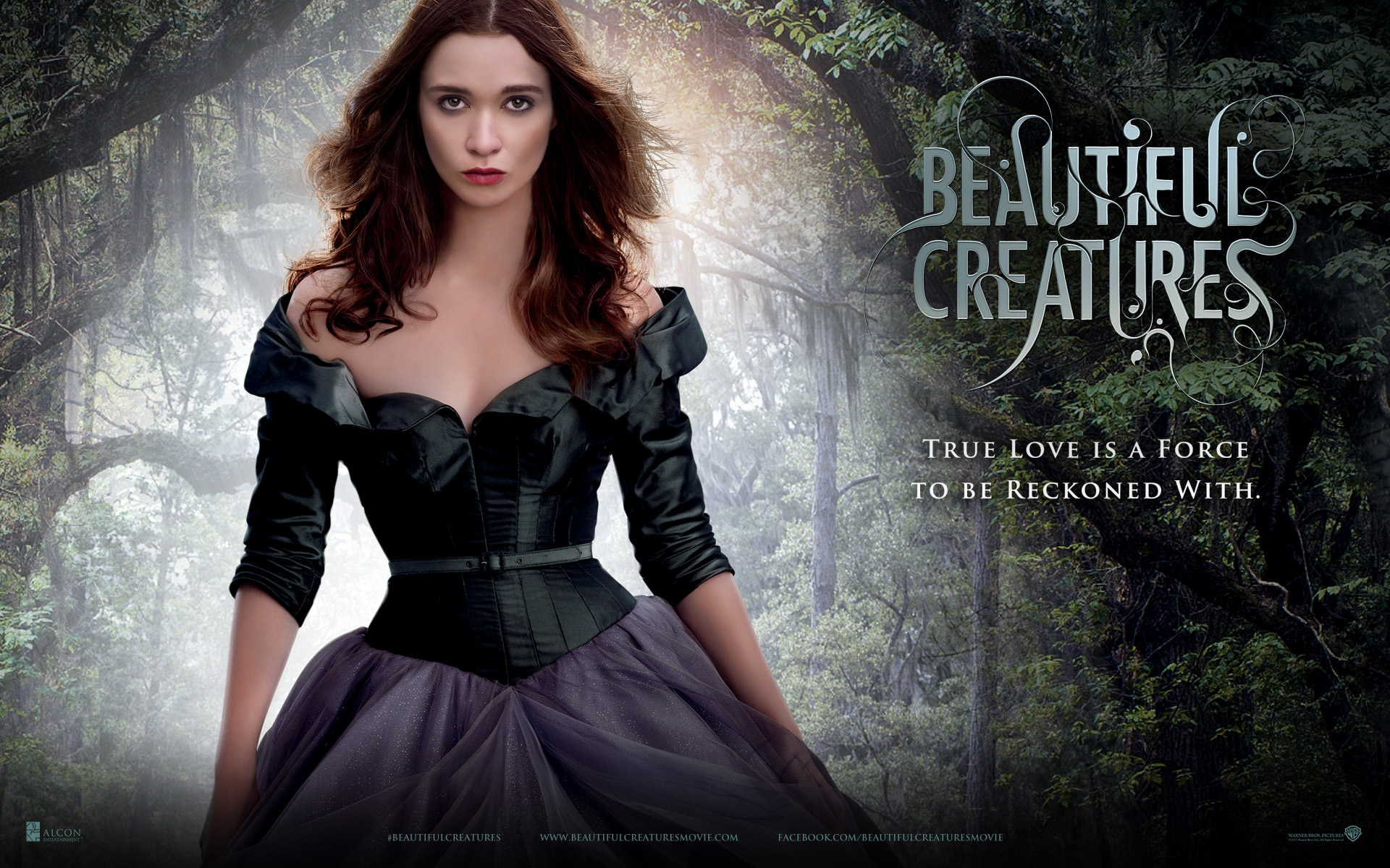 22 Beautiful Creatures HD Wallpapers | Backgrounds ...