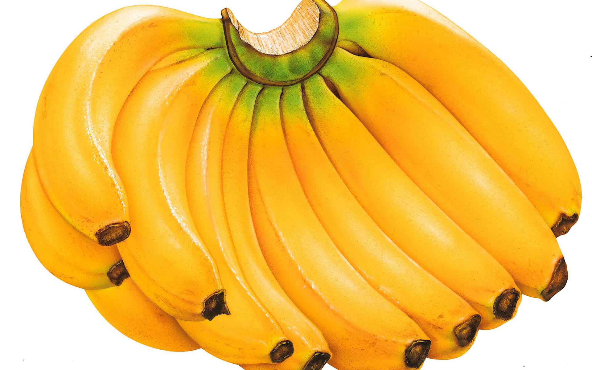 banana hd wallpaper | background image | 1920x1200 | id:367377