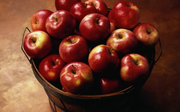 Food - Apple Wallpapers and Backgrounds ID : 367382