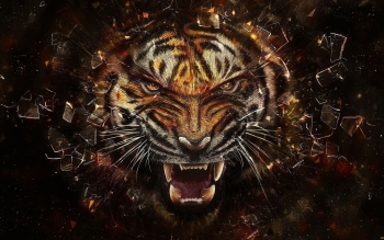 Artistic - Tiger Wallpapers and Backgrounds ID : 368582
