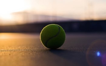 Deporte - Tennis Wallpapers and Backgrounds ID : 368873
