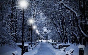 Fotografie - Winter Wallpapers and Backgrounds ID : 372081