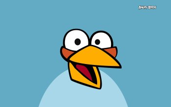 Video Game - Angry Birds Wallpapers and Backgrounds ID : 372361