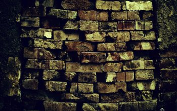 Photography - Brick Wallpapers and Backgrounds ID : 373017
