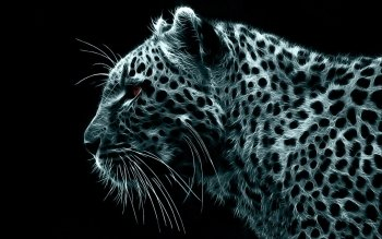 Animal - Leopard Wallpapers and Backgrounds ID : 373192