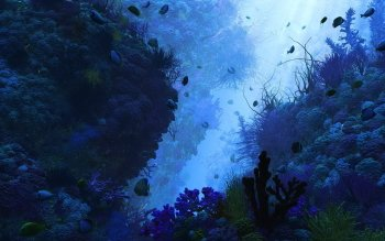 Artistic - Underwater Wallpapers and Backgrounds ID : 375471