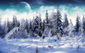 Artistic - Winter Wallpapers and Backgrounds ID : 379790