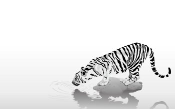Artistic - Tiger Wallpapers and Backgrounds ID : 380984