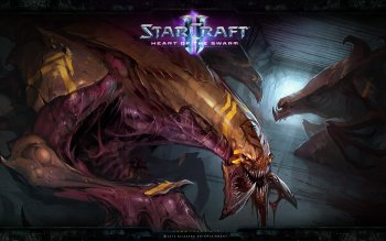 Video Game - Starcraft Ii: Heart Of The Swarm Wallpapers and Backgrounds ID : 382219