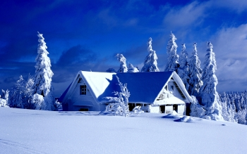 Photography - Winter Wallpapers and Backgrounds ID : 387657