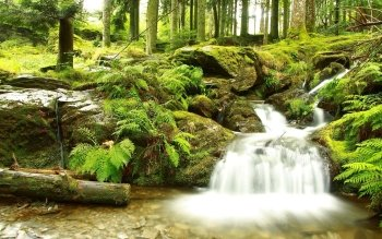 Earth - Stream Wallpapers and Backgrounds ID : 388894