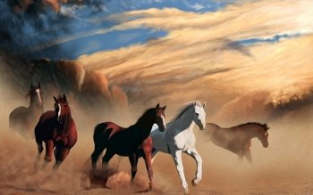 Animal - Horse Wallpapers and Backgrounds ID : 389588