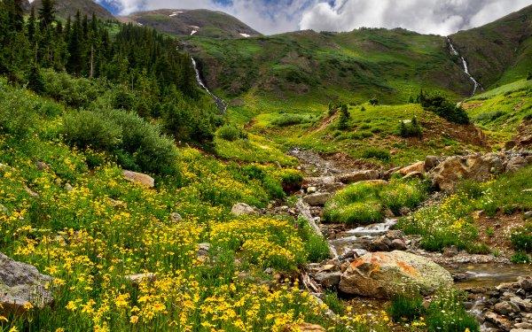 Earth Landscape Mountain Meadow Flower Stream HD Wallpaper | Background Image