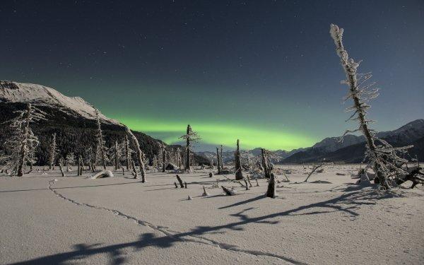 Earth Winter Aurora Borealis HD Wallpaper | Background Image