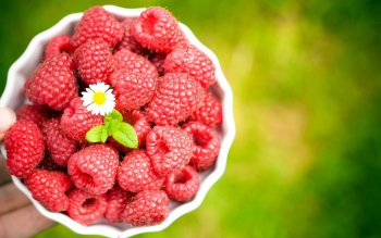Alimento - Raspberry Wallpapers and Backgrounds ID : 396599