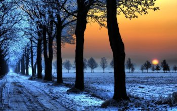 Fotografie - Winter Wallpapers and Backgrounds ID : 397893