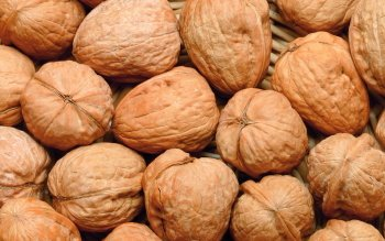 Alimento - Walnut Wallpapers and Backgrounds ID : 400437