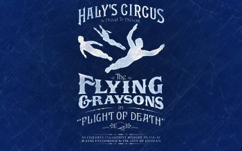 Comics - Haly's Circus: Flying Graysons Wallpapers and Backgrounds ID : 400442