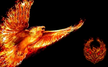 Fantasy - Phoenix Wallpapers and Backgrounds ID : 403166