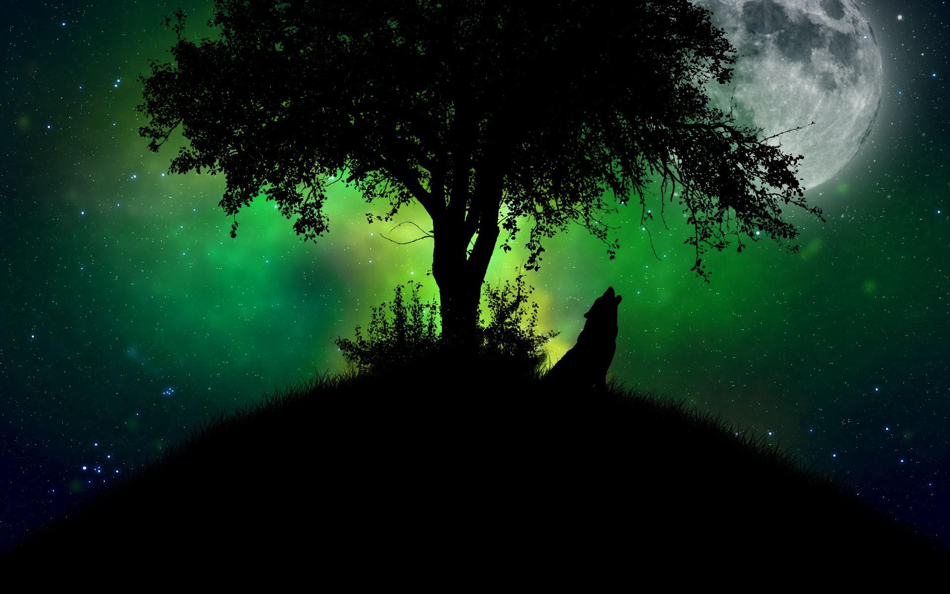 mystical night quotes