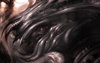 Dark - Creature Wallpapers and Backgrounds ID : 405149