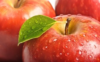 Alimento - Apple Wallpapers and Backgrounds ID : 405949