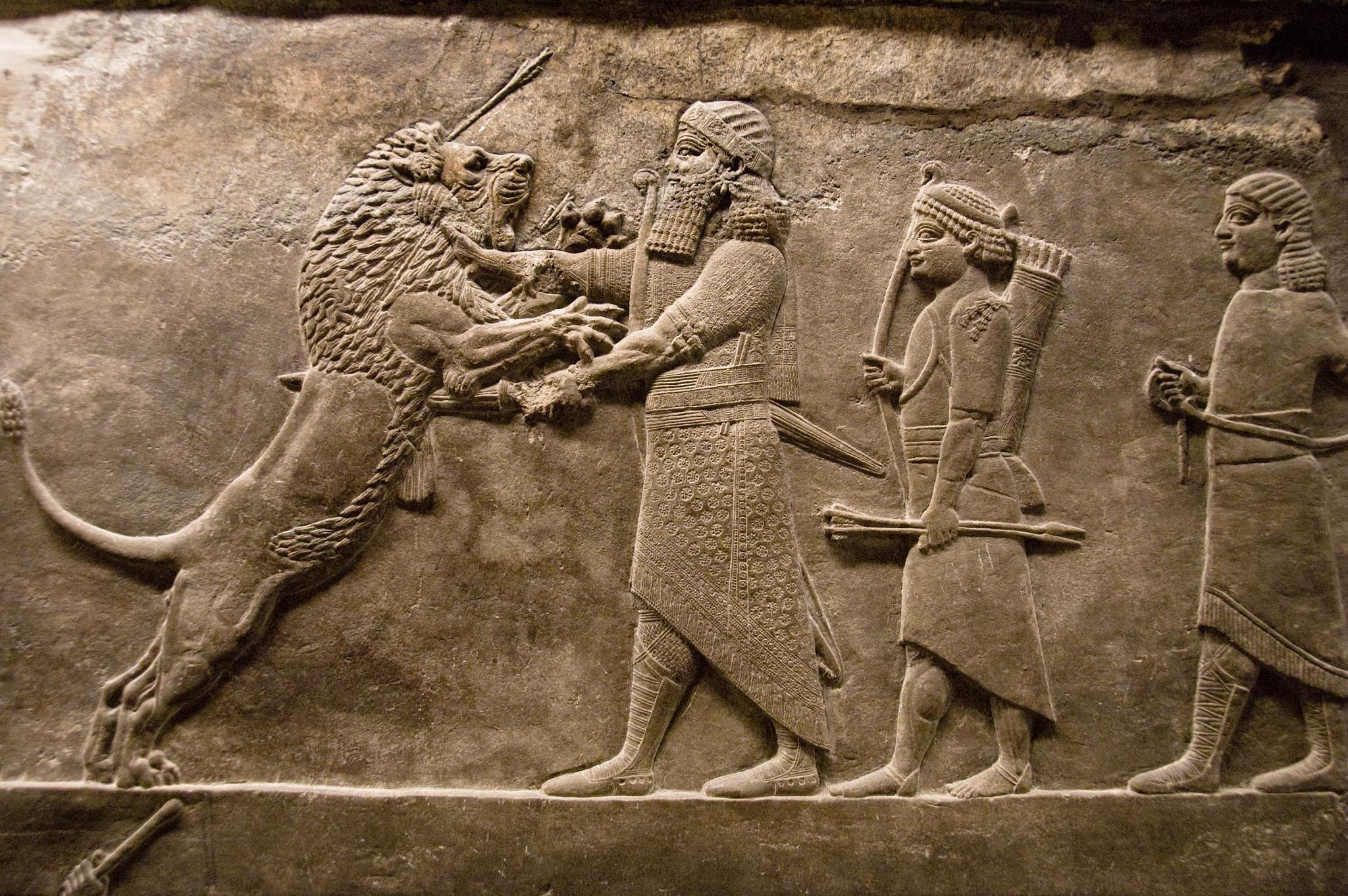 8 assyria lion hunts hd wallpapers background images