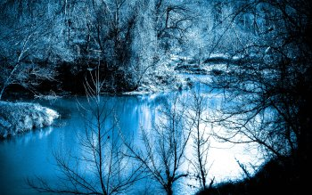 Fotografia - Winter Wallpapers and Backgrounds ID : 408127