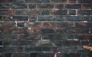 Фотографии - Brick Wallpapers and Backgrounds ID : 409776