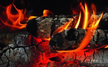 Fotografie - Fire Wallpapers and Backgrounds ID : 411955