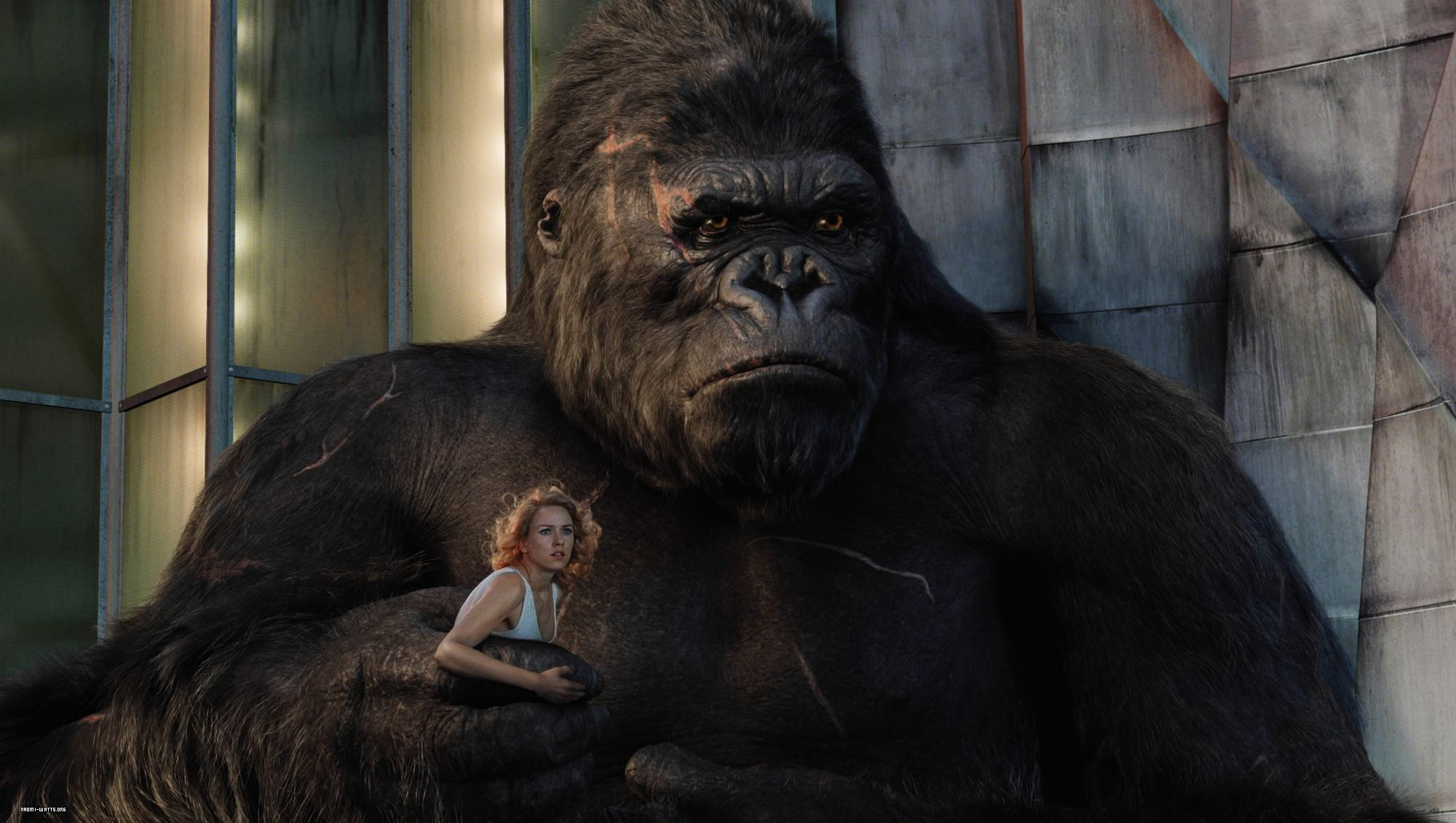 King kong 2005 full hd fondo de pantalla and fondo de - King kong 2005 hd wallpapers ...