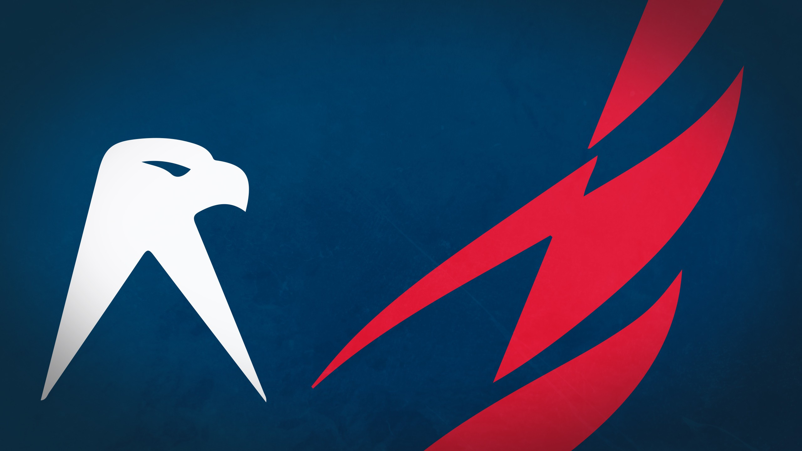washington capitals computer wallpapers desktop