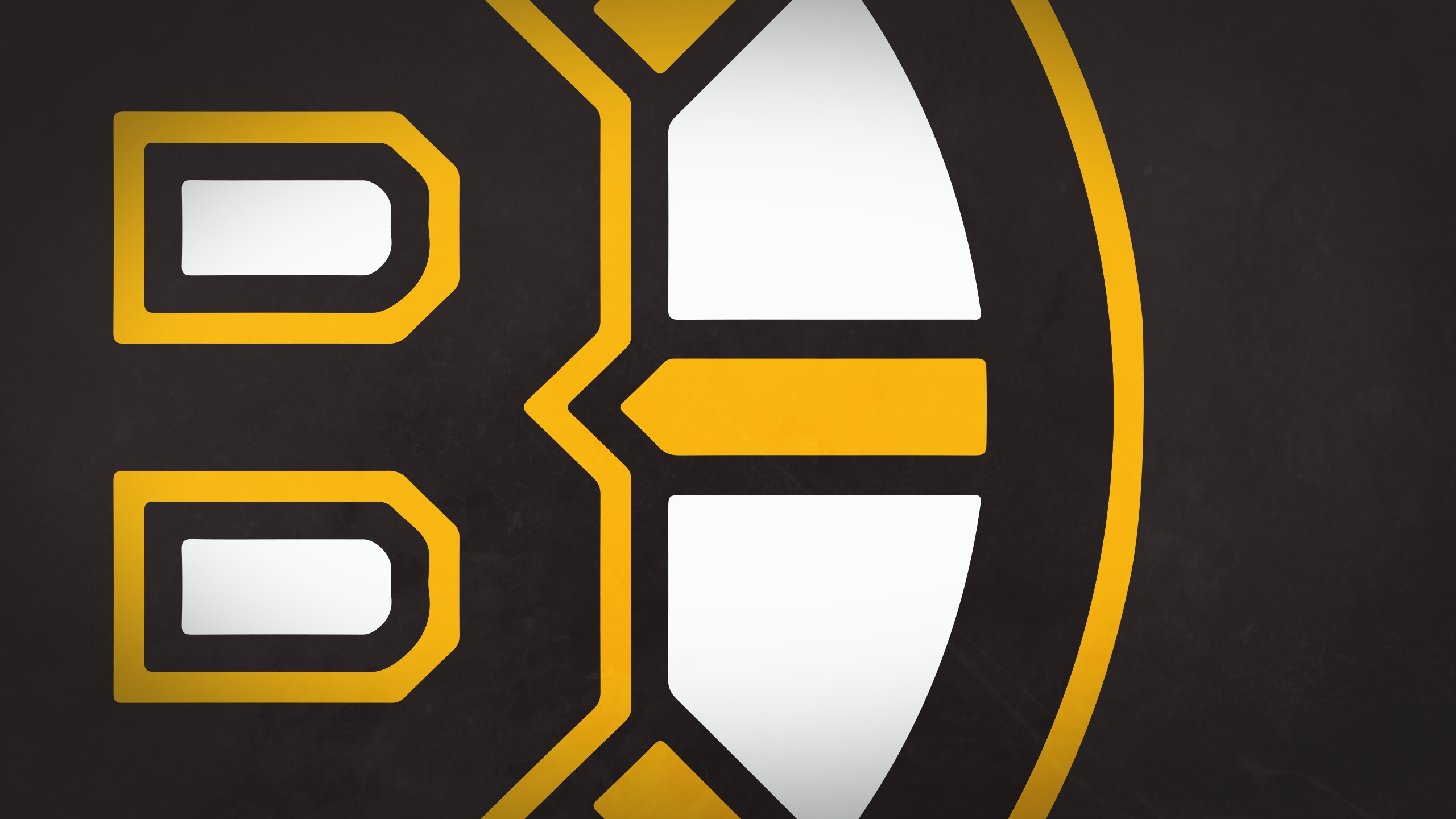 Boston Bruins Wallpaper 2560x1440 Sports Boston Bruins